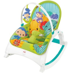 Fisher-Price Newborn to Toddler Rocker (6+ Month)