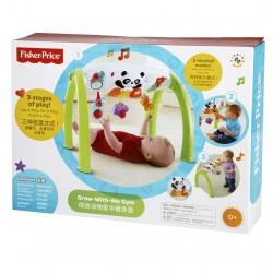 Fisher Price Newborn Grow-With-Me Gym Amusement Toy (Birth+)