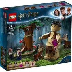 LEGO Harry Potter 75967 Forbidden Forest: Umbridge's Encounter