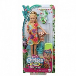 Barbie and Chelsea The Lost Birthday Stacie Doll and Accessories